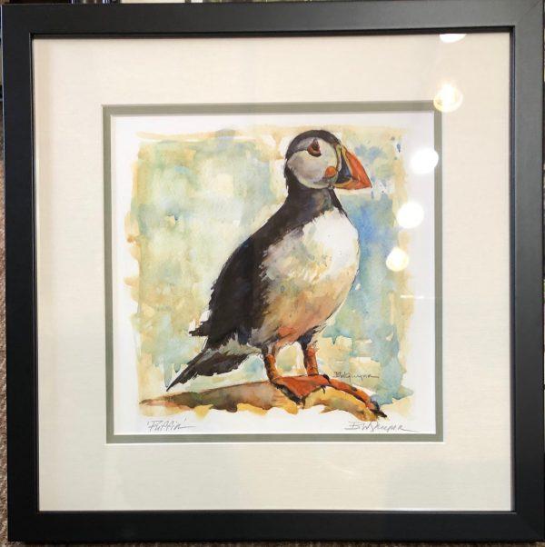 Puffin watercolor - Becky Webb Guynn